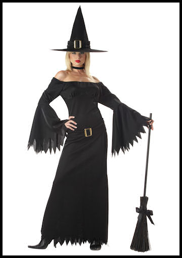 Adult Sexy Witch Costume by Halloween Costumes at LinkShare