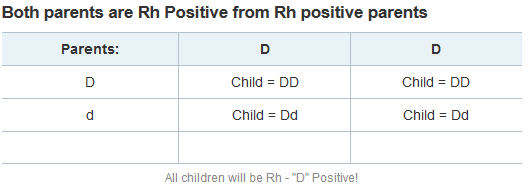 Both parents are Rh Positive - screen shot image from HP by L.A. Cargill